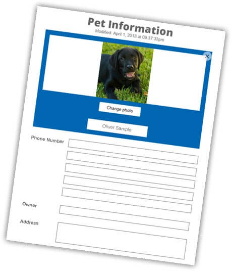 log into you pet id account